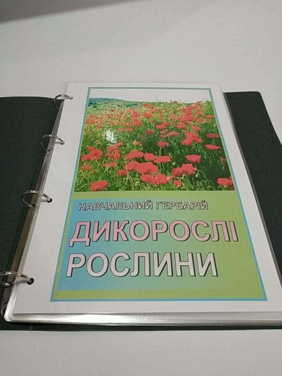 """Навчальний гербарій """"Дикорослі рослини"""" фото 51925"""