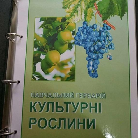 """Навчальний гербарій """"Культурні рослини"""" фото 51923"""