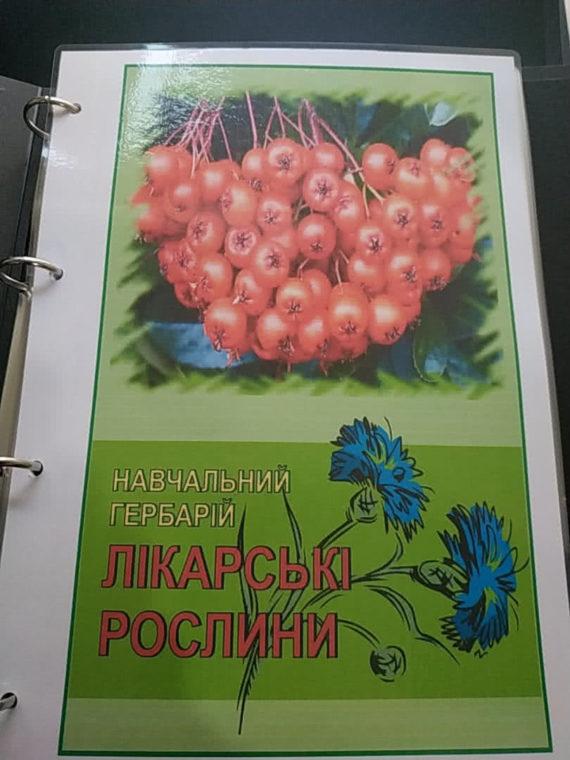 """Навчальний гербарій """"Лікарські рослини"""" фото 51921"""