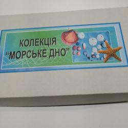 Таблички для кабинетов школы под золото фото 49670