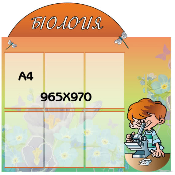 стенд Биология оранжевый фото 41764