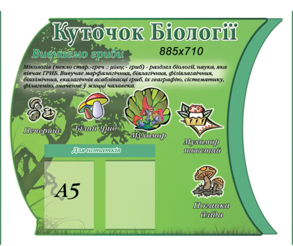 Стенд Біологія гриби фото 53192