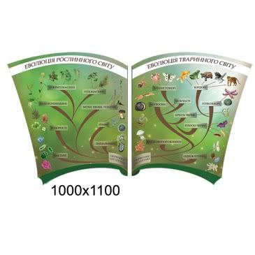 Стенд «Эволюция» зеленый двойной